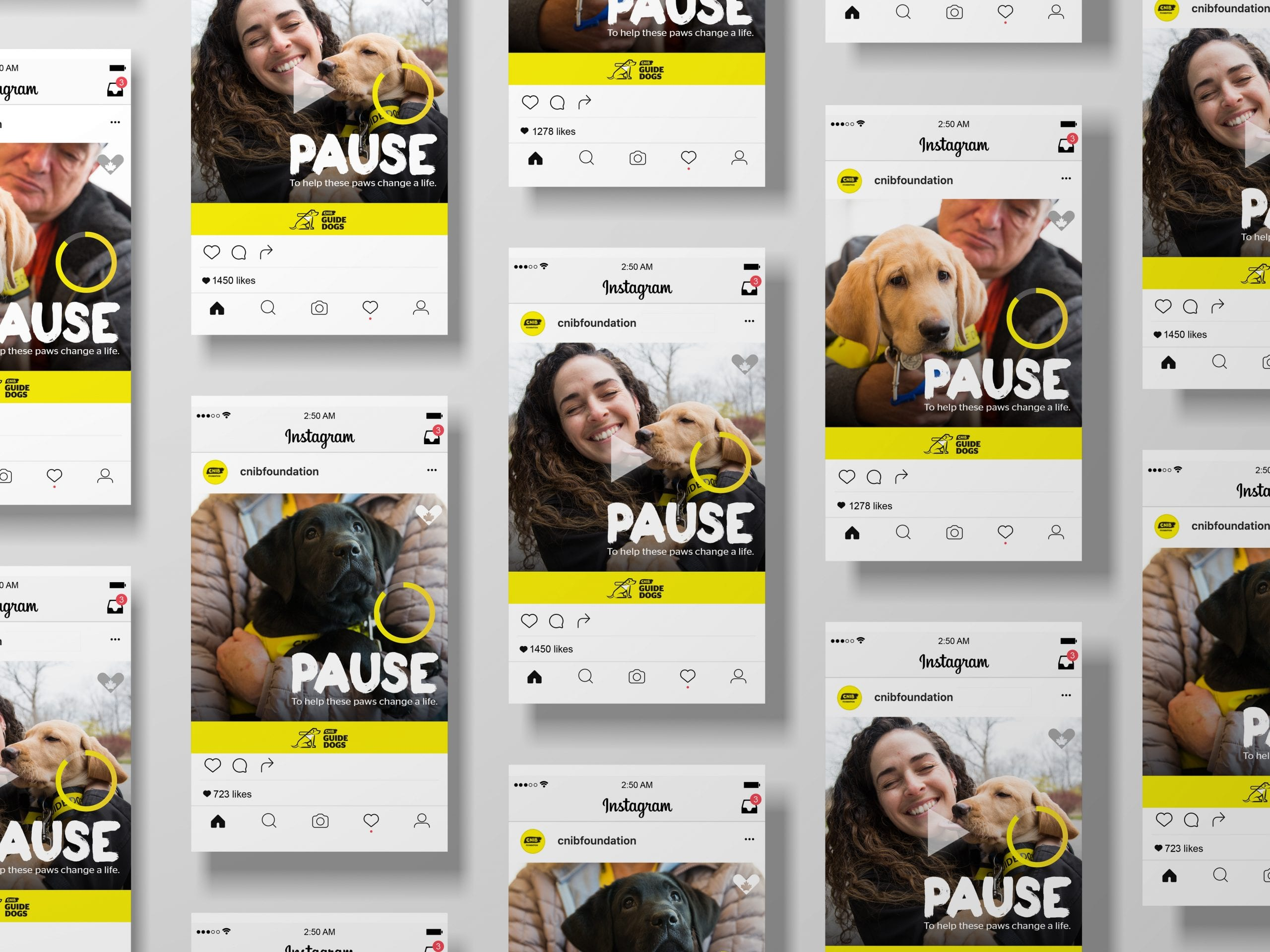 CNIB_pause_social