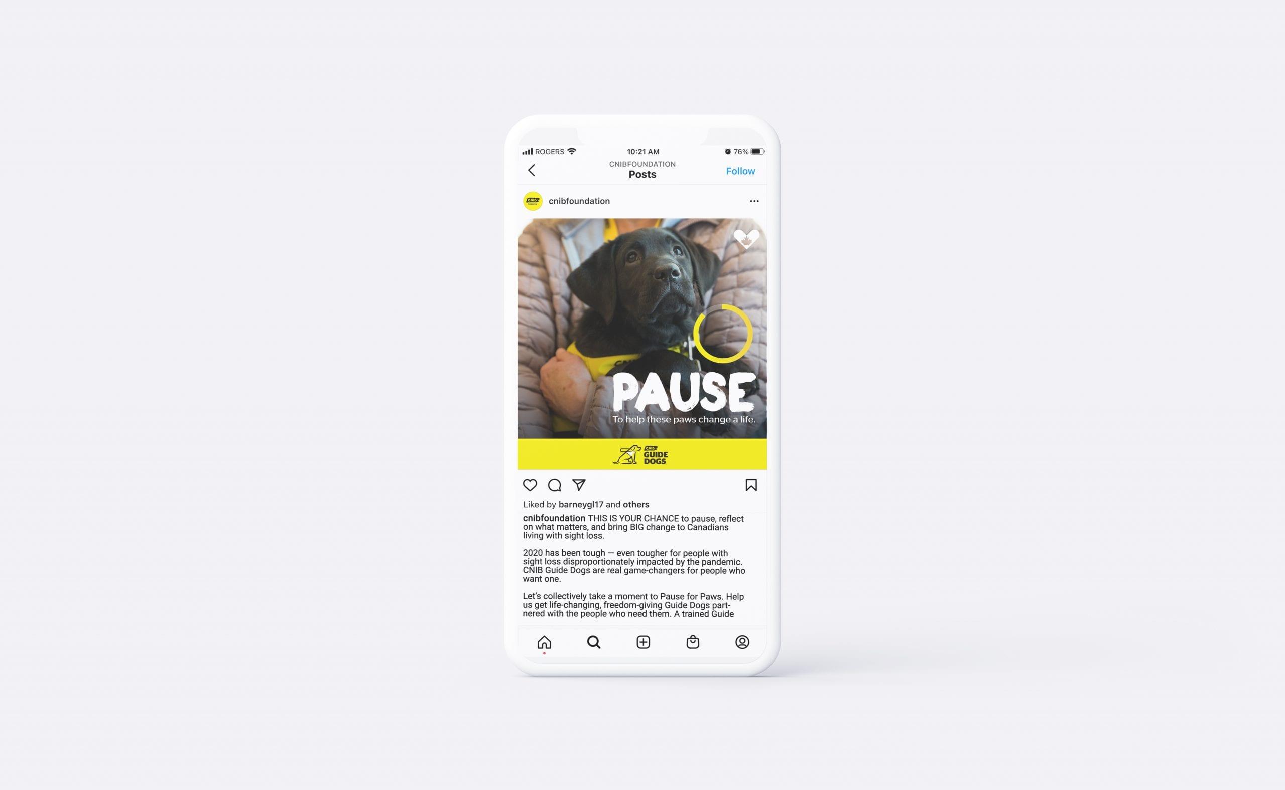 CNIB_pause_social3